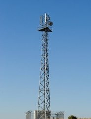 Telecom A Buzz Word