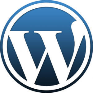 Why to have a WordPress.com Site along with Self hosted blog